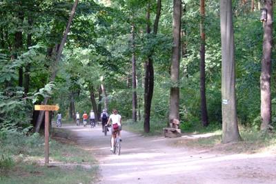 gemenc kerékpárút térkép Gemenci erdő egy napos kerékpártúra 2017. Augusztus 12. szombat